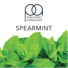 Ароматизатор TPA Spearmint Flavor